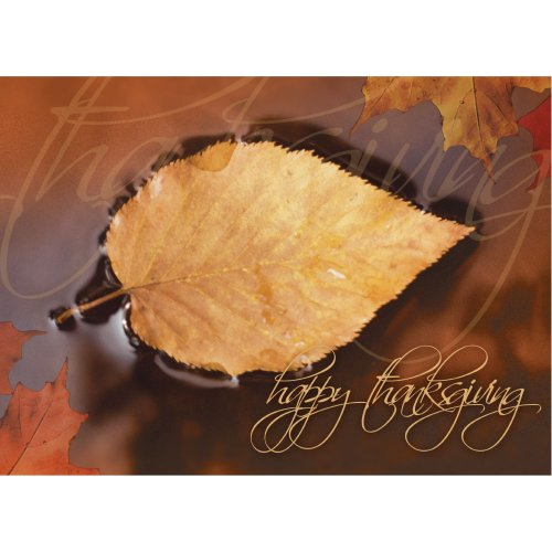 "Thanksgiving Greeting Card TH7004. Gorgeous ""Floating Leaf"" style is a ideal seller. Modern day style combines photography with graphics. twenty five cards and 26 gold foil-lined envelopes. Your satisfaction certain."