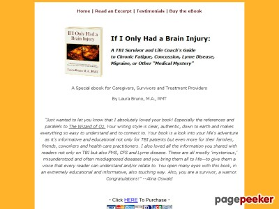 If I Only Experienced a Mind Injury Book
