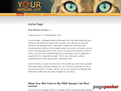 Bengal Cats Guide