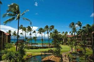 Maui Each day Deals Feb 13~16, Feb16~19, Feb17~twenty, Feb24~26 Papakea Lahaina
