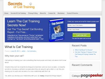Cat Training Tricks.
