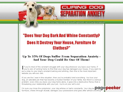 Pet Separation Stress and anxiety Coach